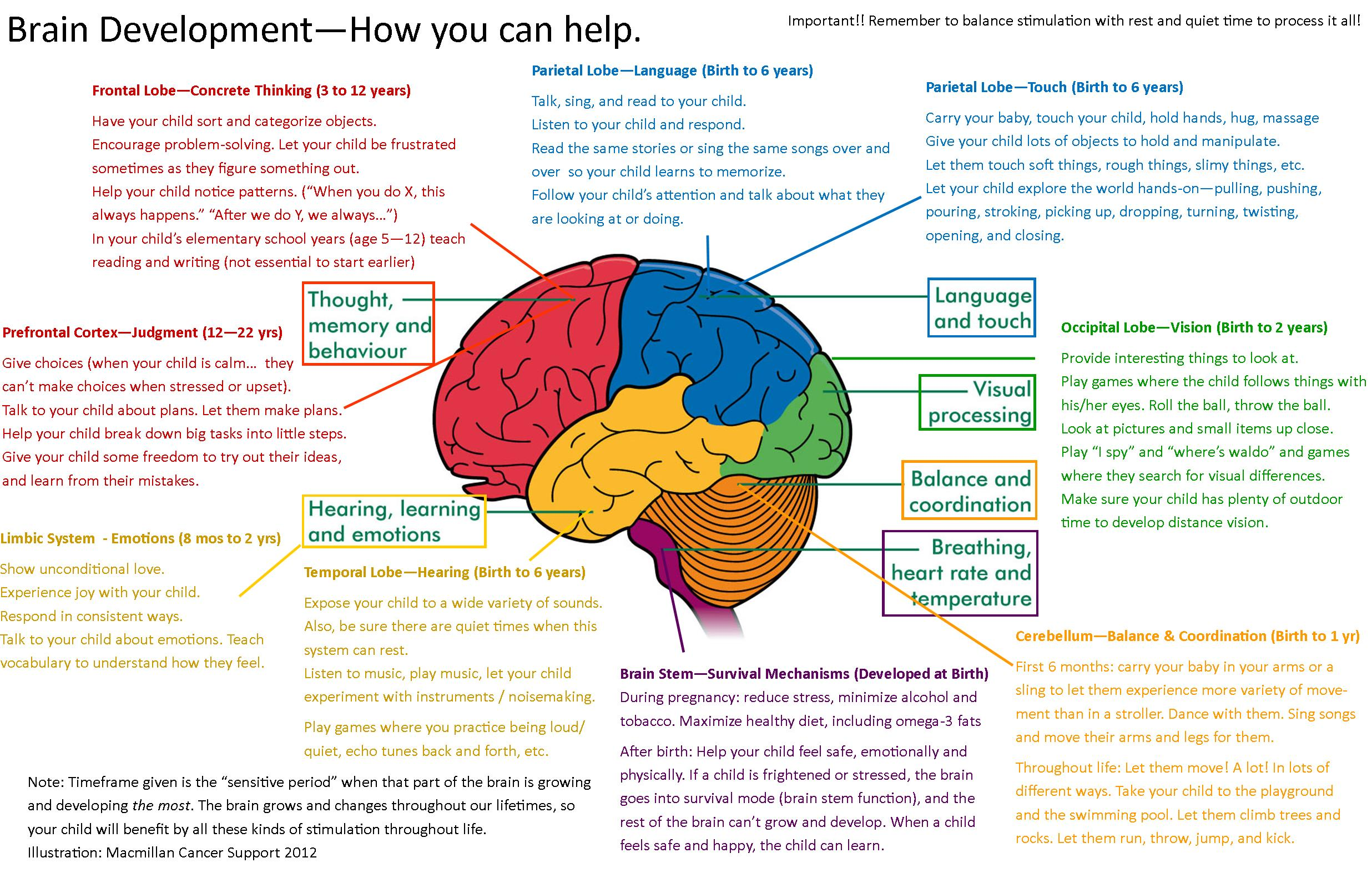 brain map more good days parenting blog