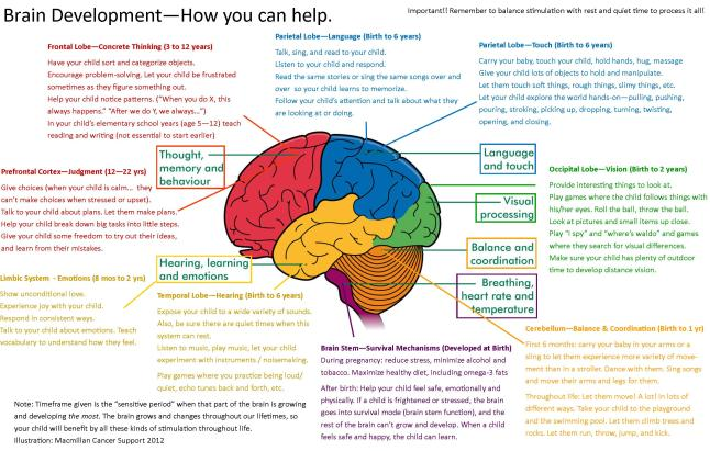 Brain Map - More Good Days - Parenting Blog