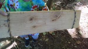 board nails