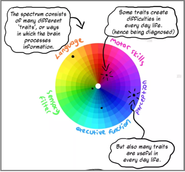 "An illustration of a circle where the ""pie pieces"" are labeled language, executive function, etc. and dots indicate where the person might have more strengths vs. more difficulties"